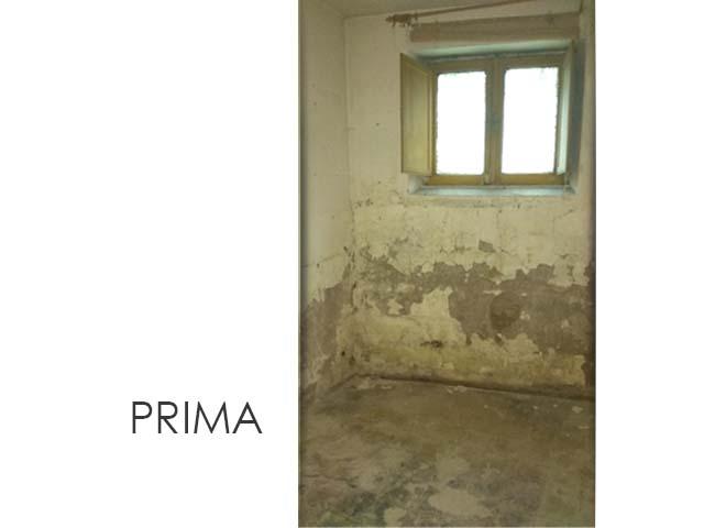 Prima06